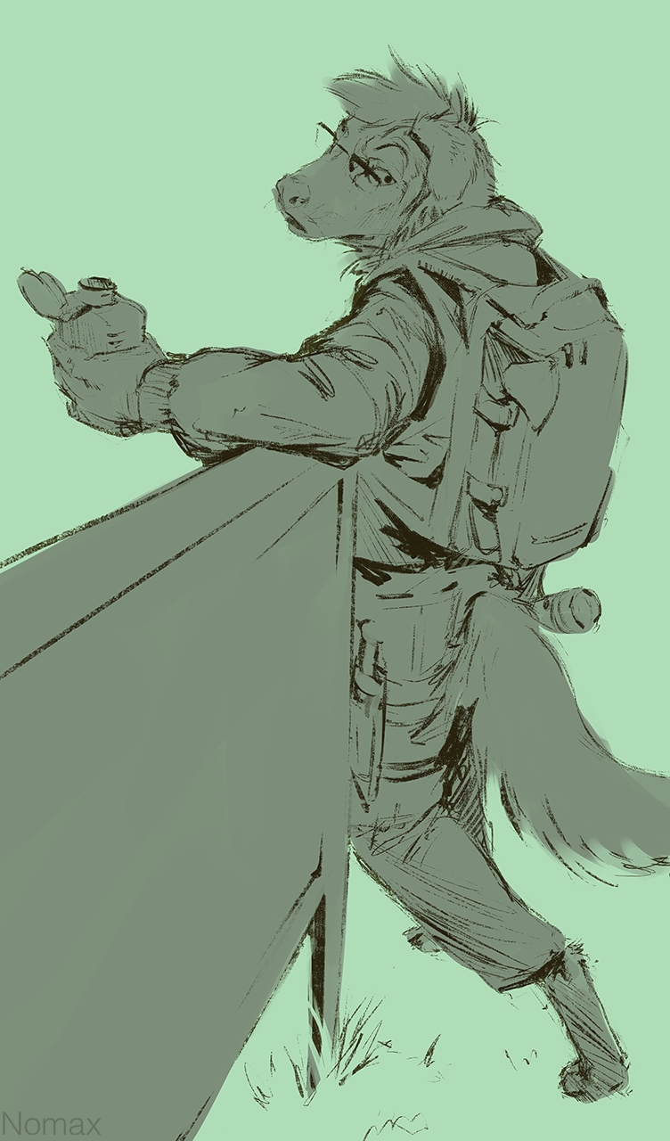 Waggit sketch