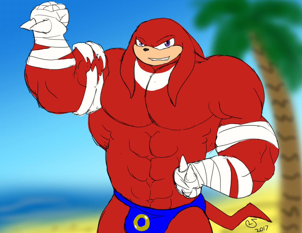 Buff Fantart Friday: Knuckles (Sonic Boom)