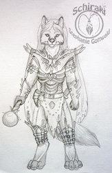 shaman armor design