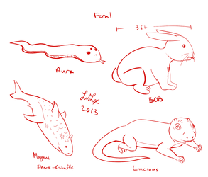 My Characters in Feral Form