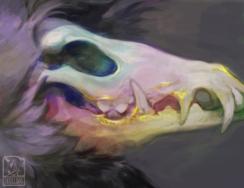 The Mindful Skull