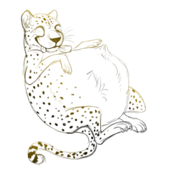 Cheetah Chub Sketch