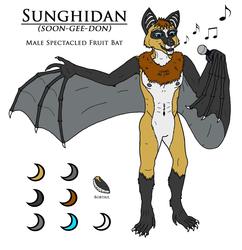 Sunghidan Reference Sheet