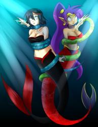 Shantae y Ryuko