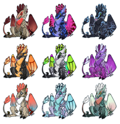 Wildclaw Adopts Batch #1
