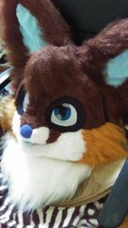 Another photo of my first fursuit