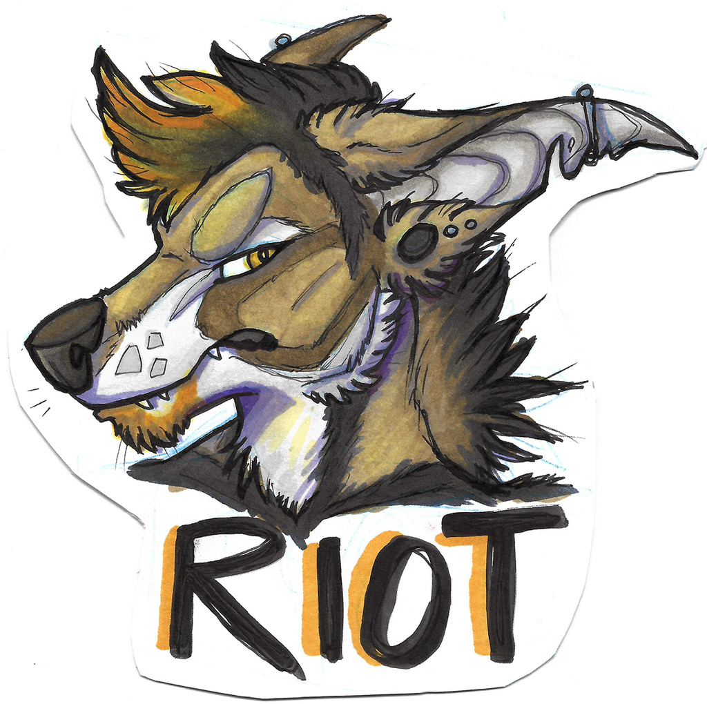Most recent image: Riot