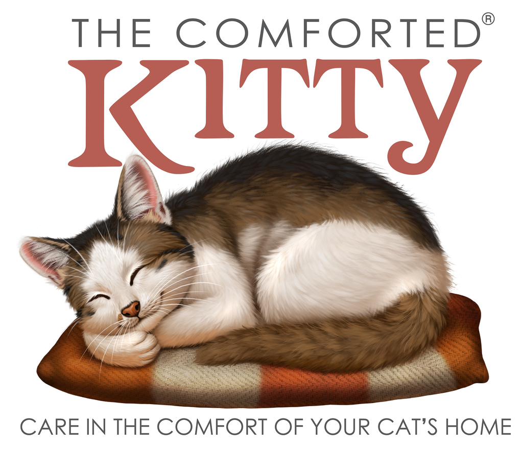 The comforted Kitty
