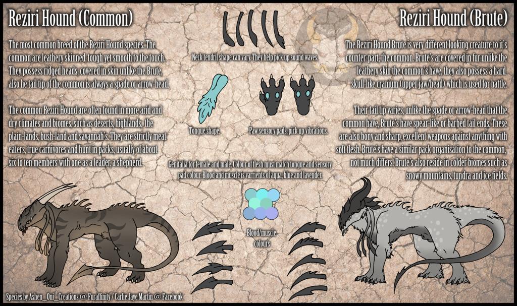 Reziri Hound Species Reference SFW