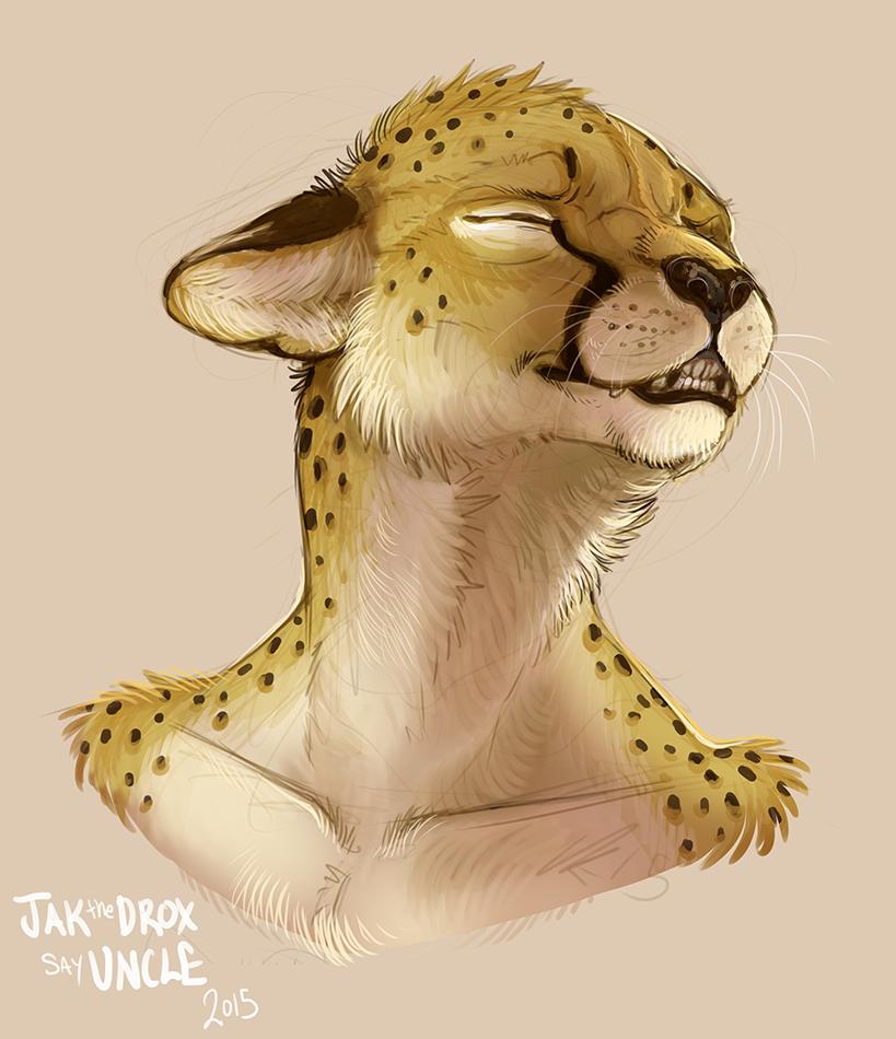 Expression study-Cheetah (colab)