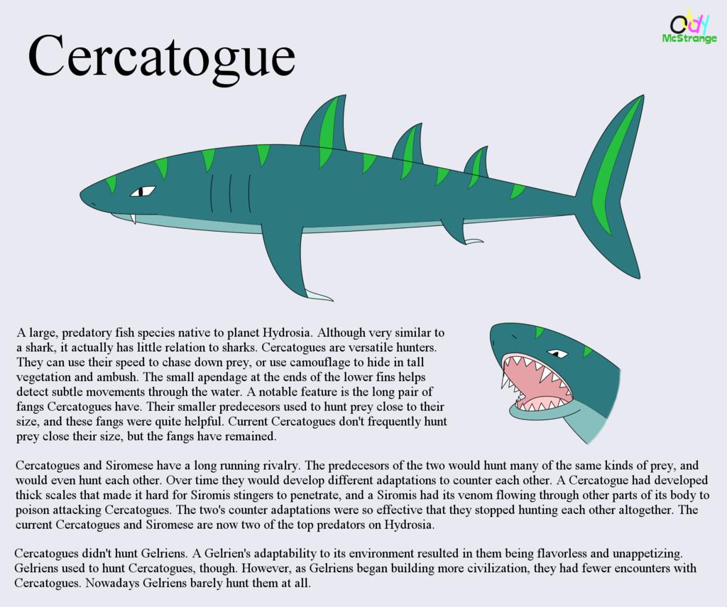 Cercatogue - Species Concept & Info