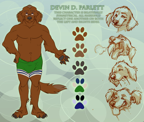 Devin D Parlett Reference Sheet (by Cardinal)