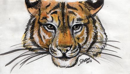 Inktober Tiger