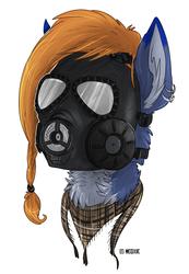 .: Gaz Mask [Lilifolies-Airsoft]