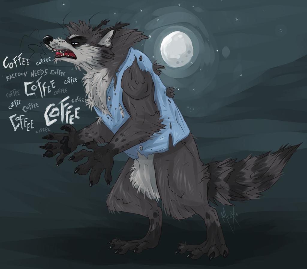 .: Raccoon needs coffee !