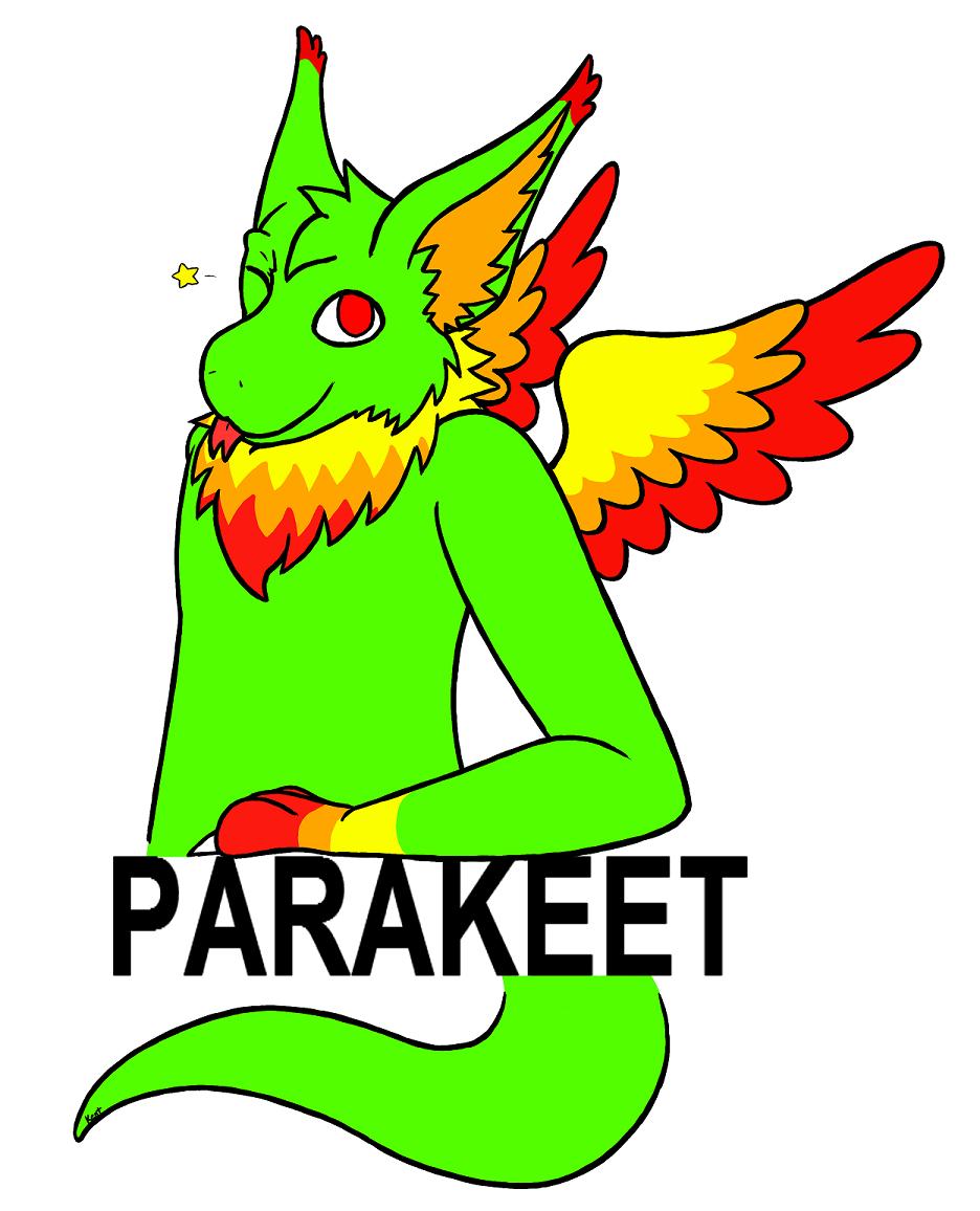Raffle prize - ParaKeetStuff