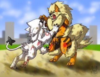 2011-Cat VS Dog