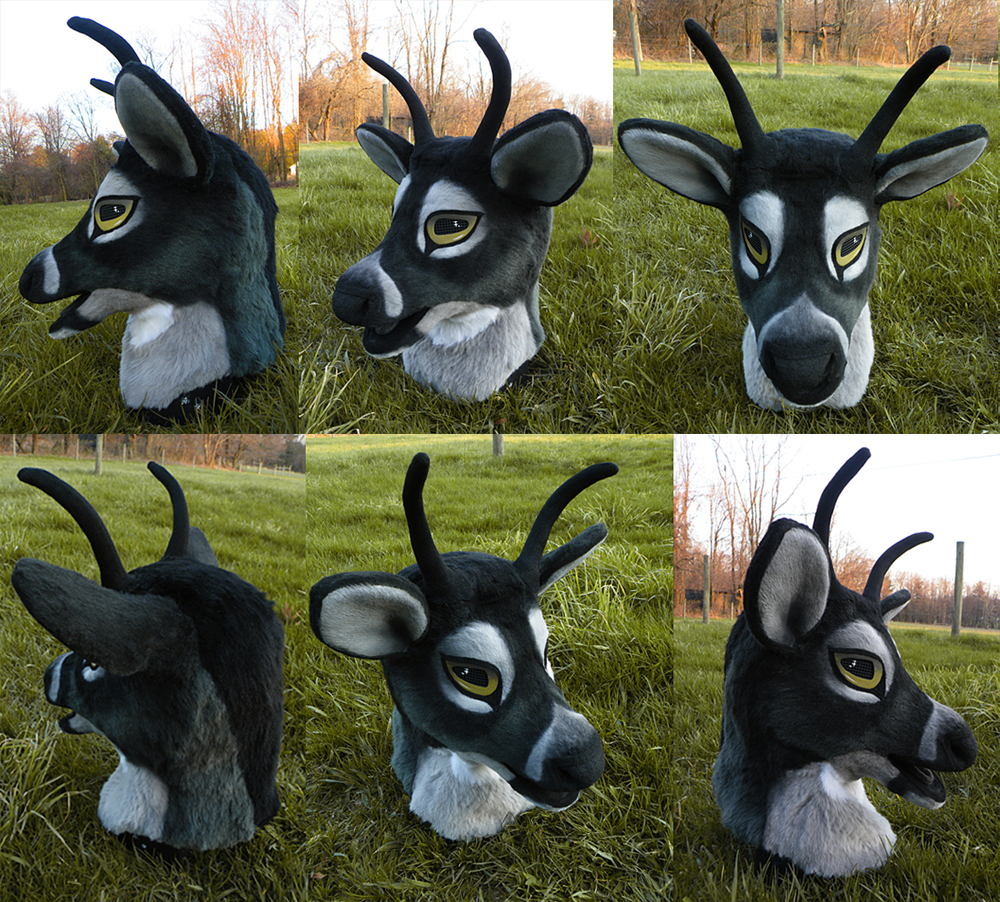 Most recent image: deer partial -PRICE REDUCED, ANTHROCON DELIVERY-