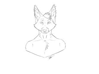 Shady Fox WIP 3