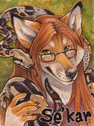Se'Kar Watercolor Badge
