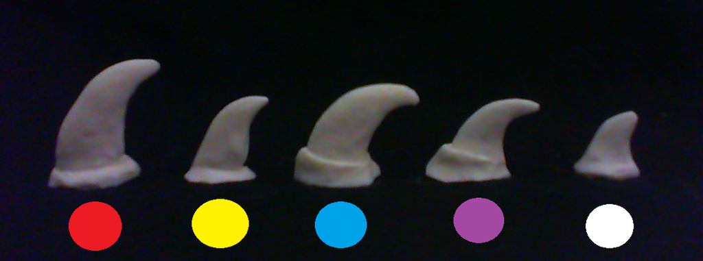 New claws available- dog, cat, generic