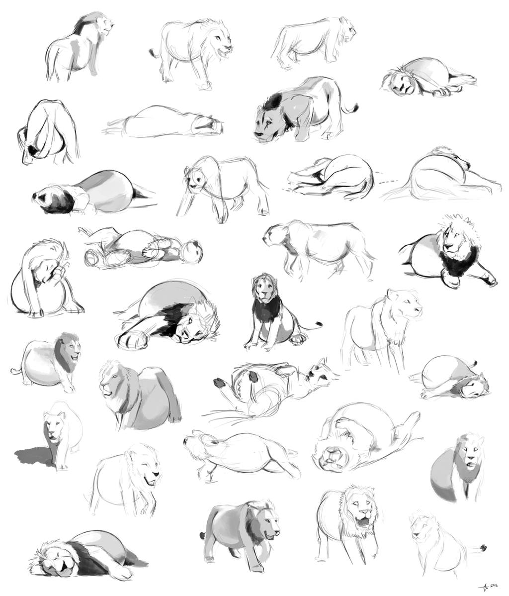 SpeedComm- Lion Sketchpage