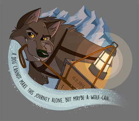 A Wolf Can