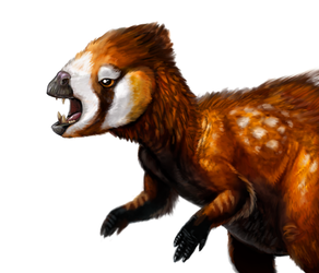 Dinovember Heterodontosaurus