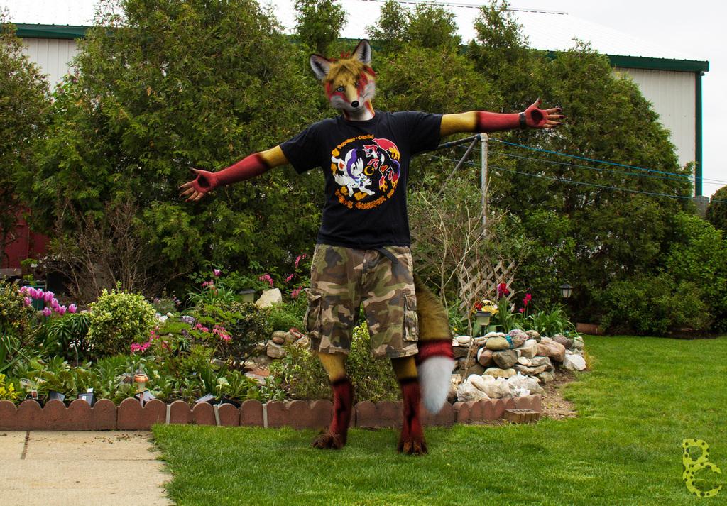 Lightning the Fox