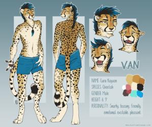 Van Reference Sheet - SFW