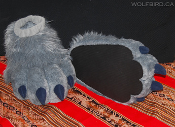 Silver's Paws