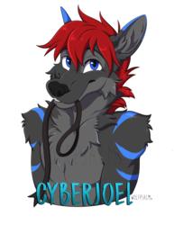 Cyberjoel Badge