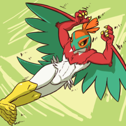 HAWLUCHA : From the top rope