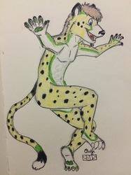 Sky Cheetah Pounce!