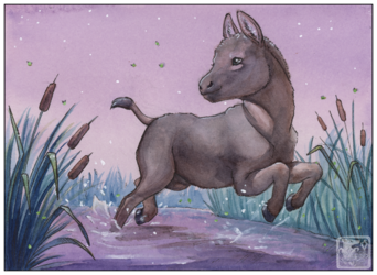 Donkey v4.952