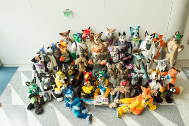 FC2016: The View from Above, Made Fur You