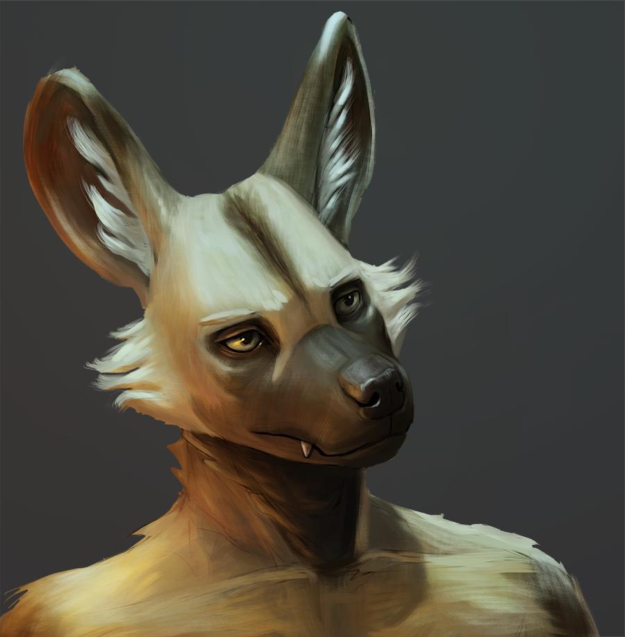 Most recent image: Wild Dog Portrait