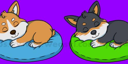 OA- Sleepy Corgis