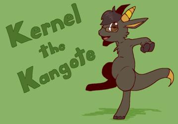 Introducing Kernel