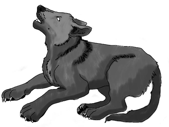 Sawtooth Pup