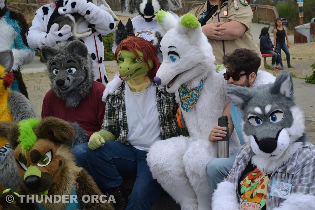 RainFurrest BBQ 2016 (Part 14)