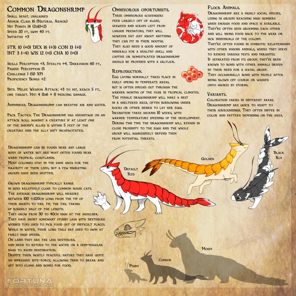 Common Dragonshrimp