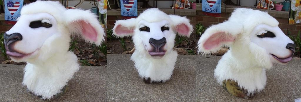 Sheep head WIP