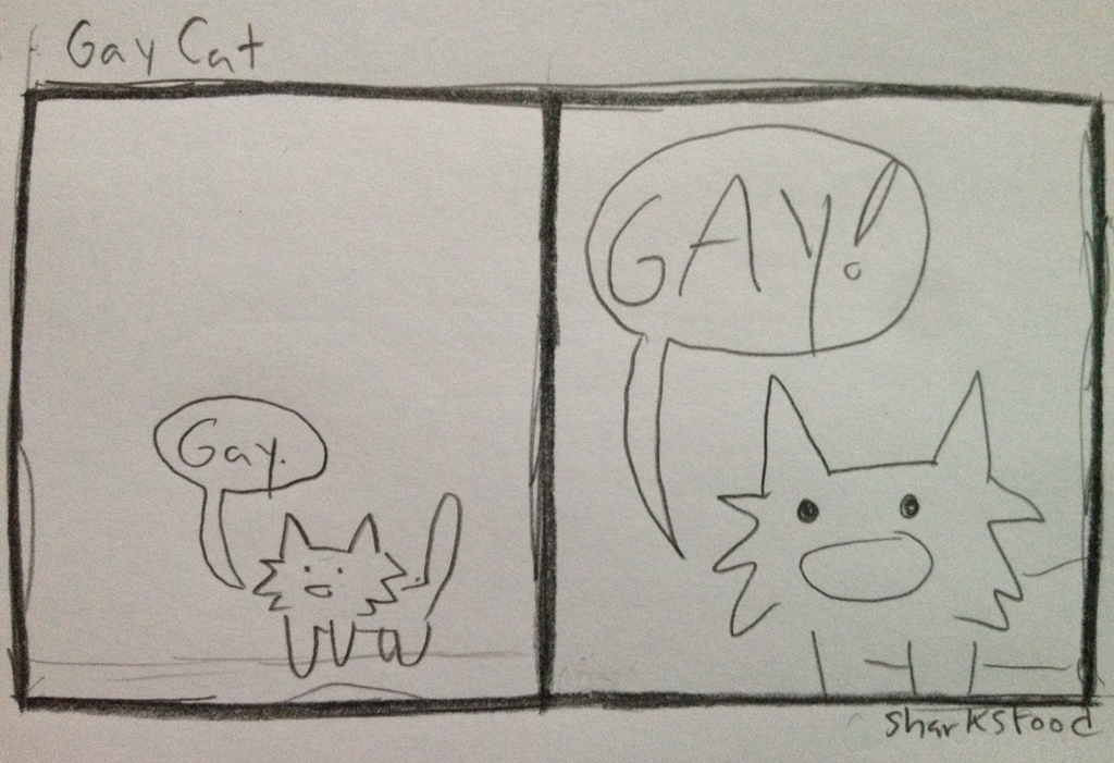 the gayest cat in the world