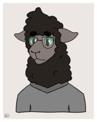 Woolly Friend