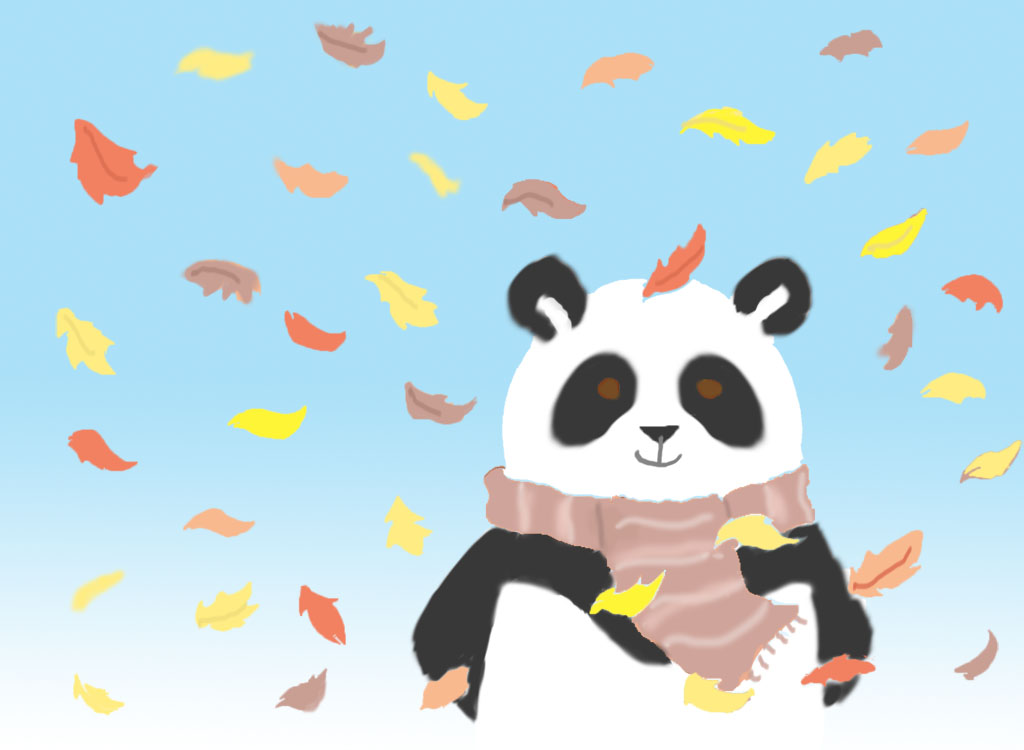 Most recent image: another autumn panda