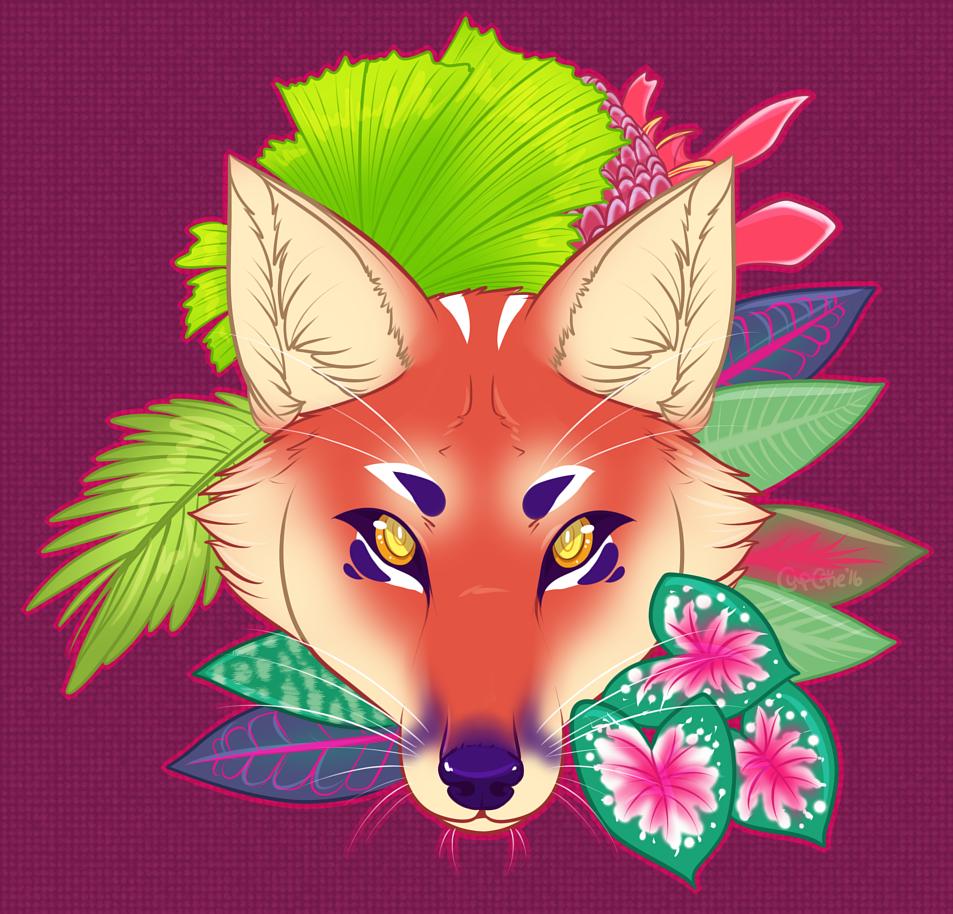 July Patreon Poll Image: Rainforest Fox