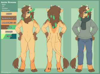 Aerin Ref Sheet - Commission
