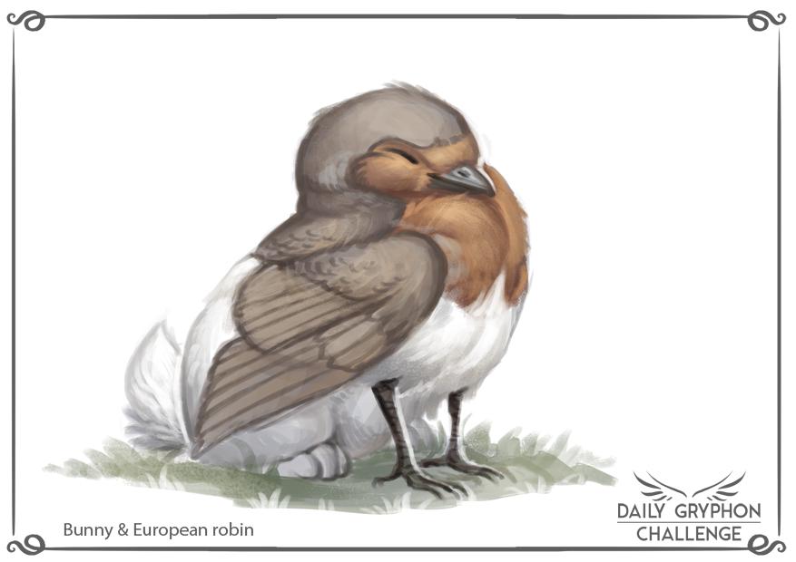 Daily Gryphon Challenge 12: Bunny & European robin
