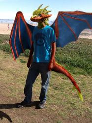 Draco Draconis